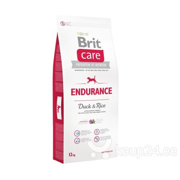 Brit Care Activity All Breed Lamb & Rice 12 kg цена и информация | Kuivtoit koertele | kaup24.ee
