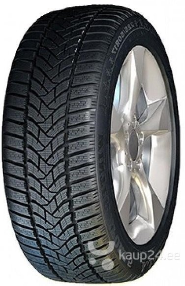 Dunlop SP Winter Sport 5 205/55R16 91 T цена и информация | Rehvid | kaup24.ee