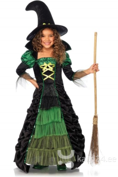 Платье ведьмы цена и информация | Karnevali  kostüümid | kaup24.ee