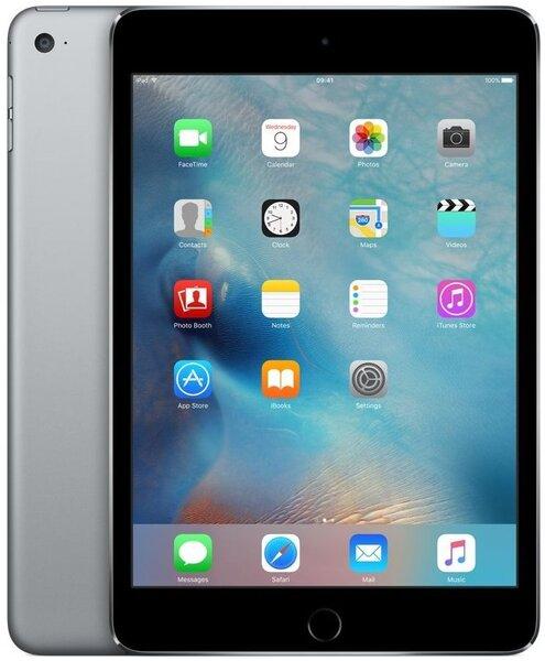 Apple iPad Mini 4 WiFi (16GB), Hall, MK6J2HC/A цена и информация | Tahvelarvutid | kaup24.ee
