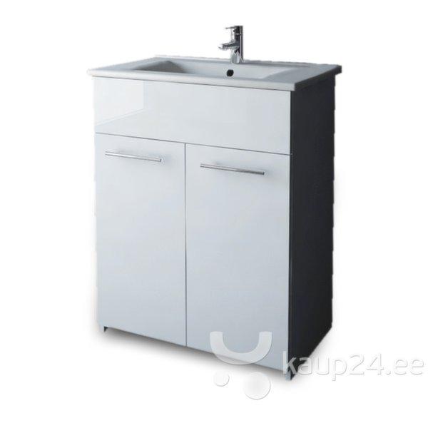 Шкафчик для ванной комнаты с раковиной цена и информация | Vannitoamööbel | kaup24.ee