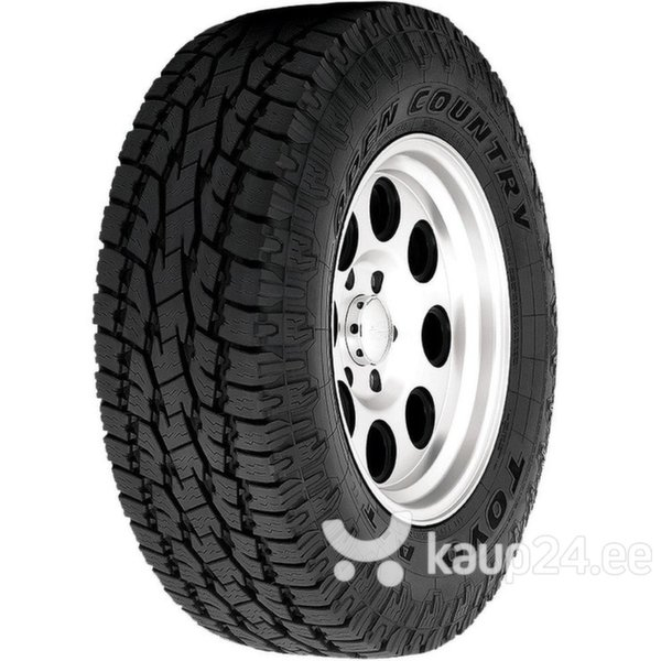 Toyo OPEN COUNTRY A/T+ 265/60R18 110 T цена и информация | Rehvid | kaup24.ee