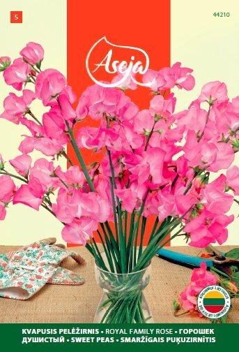 Lillhernes /Sweet Peas/ Royal family rose, ASEJA, 2,5g, 44210( 5 ) цена и информация | Lilleseemned | kaup24.ee