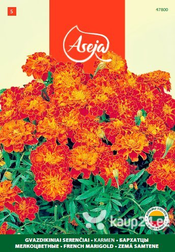 Peiulill /French Marigold/ Karmen, ASEJA, 1g, 47800( 5 ) цена и информация | Lilleseemned | kaup24.ee