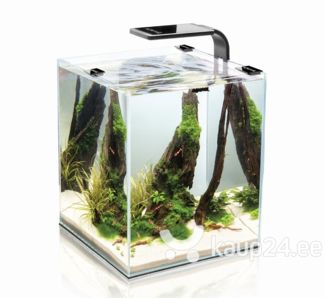 Akvaarium SHRIMP SET SMART 20 Black, must цена и информация | Akvaariumid ja seadmed | kaup24.ee