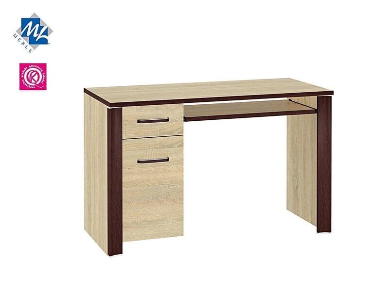 Компьютерный стол Oliwier 15 цена и информация | Arvutilauad, kirjutuslauad | kaup24.ee