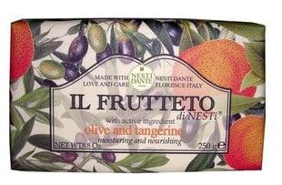 Naturaalne seep Nesti Dante Il Frutteto Olive And Tangerine 250 g