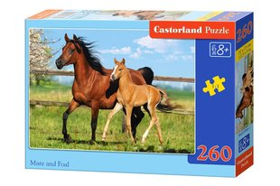 Пазл Castorland Mare And Foal 260 дет.