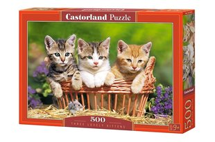 Pusle Puzzle Castorland Three Lovely Kittens, 500 tk