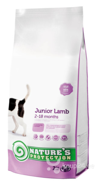 Nature's Protection Dog Junior Lamb, 2 kg цена и информация | Kuivtoit koertele | kaup24.ee