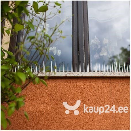 Иглы для отпугивания птиц цена и информация | Närilised, mutid | kaup24.ee