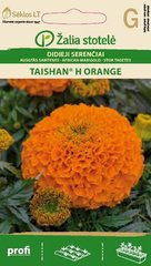 Suur peiulill TAISHAN® H ORANGE