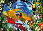 Pusle Step Puzzle Papagoid, 1000 detaili hind ja info | Pusled | kaup24.ee
