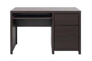 Письменный стол Kaspian 120, коричневый цена и информация | Письменный стол Kaspian 120, коричневый | kaup24.ee