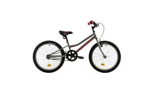 """Laste jalgratas DHS Teranna 2002, 20"""""""