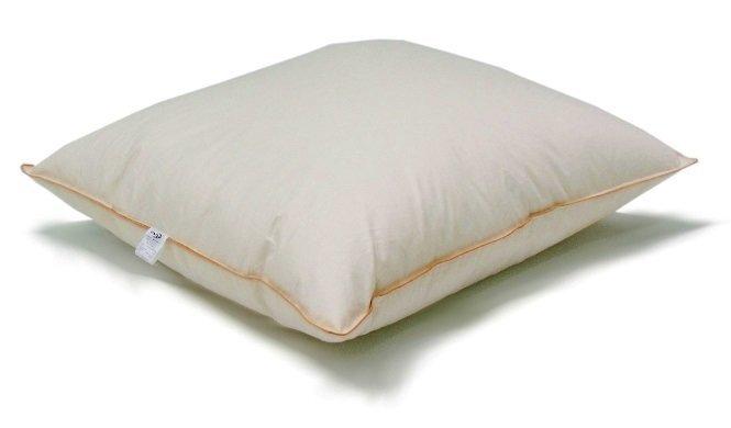 Подушка с наполнителем из гусиного пуха и пера PEN-POL цена и информация | Padjad | kaup24.ee
