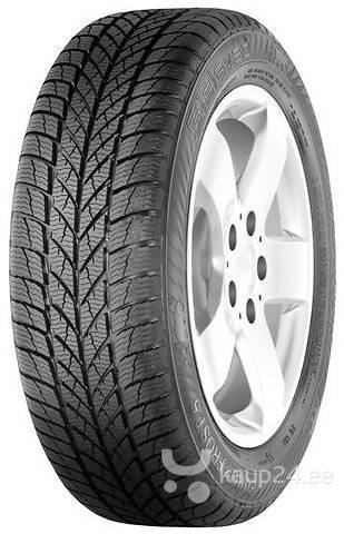 Gislaved EuroFrost 5 195/65R15 95 T XL цена и информация | Rehvid | kaup24.ee