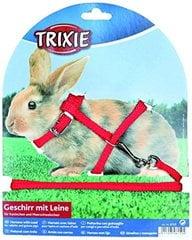 Traksid jalutusrihmaga küülikutele Trixie hind ja info | Puurid ja tarvikud närilistele | kaup24.ee