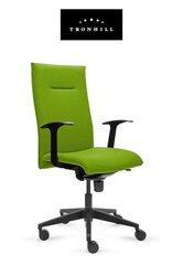 Kontoritool Recto Executive roheline hind ja info | Kontoritoolid | kaup24.ee