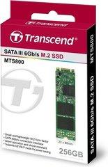 Transcend MTS800 256GB SATA3 (TS256GMTS800S)