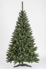 Jõulupuu Tytus 270 cm