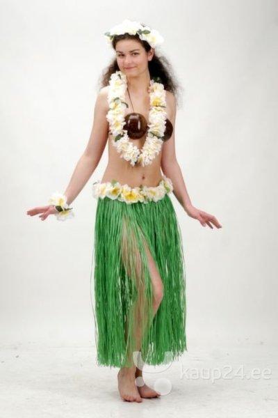 Hawaii pärgade komplekt koos seelikuga, roheline цена и информация | Karnevali  kostüümid | kaup24.ee
