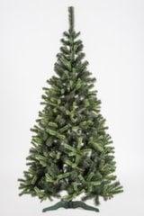 Jõulupuu Victoria 1.8 m