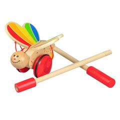 Детская деревянная игрушка Hape - E0340 цена и информация | Игрушки для младенцев | kaup24.ee