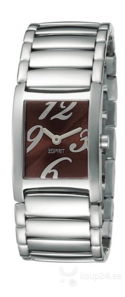 Часы ESPRIT Trace Silver Brown цена и информация | Naiste käekellad | kaup24.ee