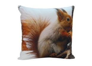 Dekoratiivne padi Comco 03Squirrel, 45 x 45 cm