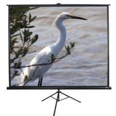 Ekraan Elite Screens ( 213 x 213 cm ) цена и информация | Экраны для проекторов | kaup24.ee