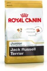 Kuivtoit Royal Canin Jack Russelli tõust kutsikatele Junior, 0,5 kg