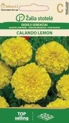 Suureõieline saialill Calando Lemon цена и информация | Семена цветов | kaup24.ee