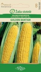 Mais Golden bantam hind ja info | Mais Golden bantam | kaup24.ee