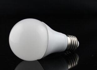 LED pirn GLOBE 8W
