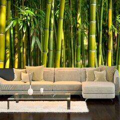 Fototapeet - Oriental Garden