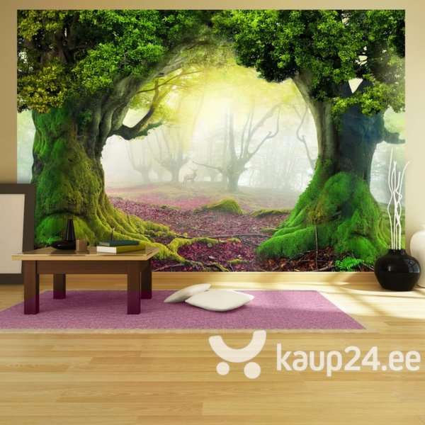 Fototapeet - Enchanted forest
