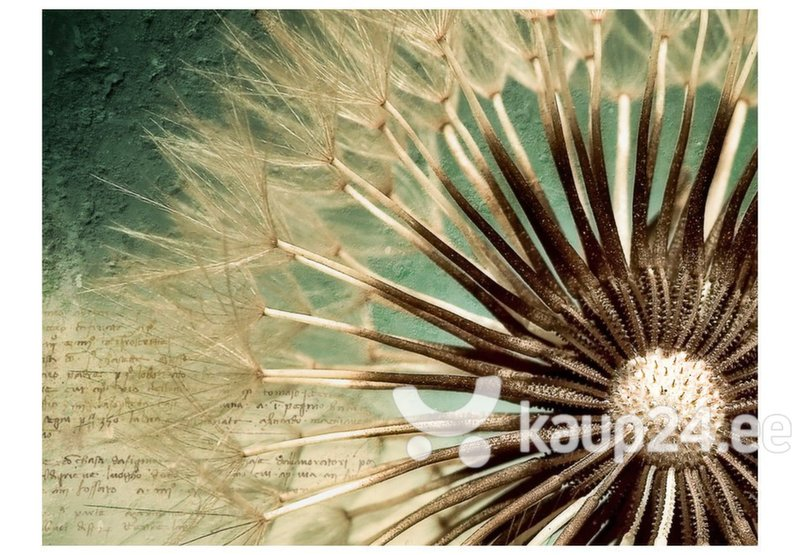 Fototapeet - Focus on dandelion