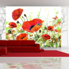 Fototapeet - Country poppies