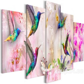 Maal - Colourful Hummingbirds (5 Parts) Wide Pink