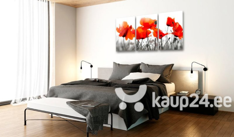 Maal - Charming Poppies