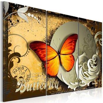 Maal - Flight of a butterfly