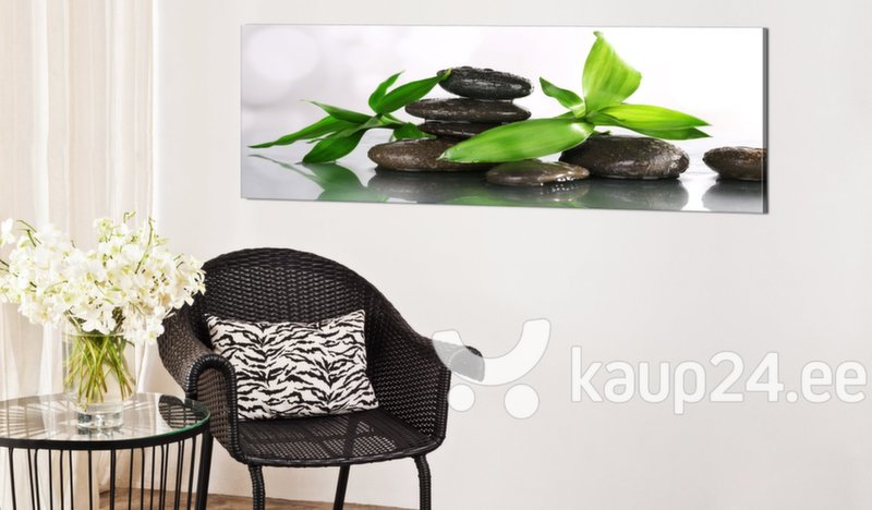 Maal - SPA: Bamboo and Stones