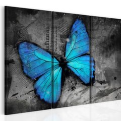 Maal - The study of butterfly - triptych hind ja info | Seinapildid | kaup24.ee