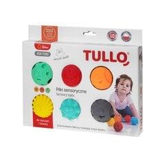 Sensoorset arengut toetavad pallid Tullo, emotikonid, 6 tk, 462