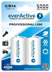 "everActive HR14 C ""Ready to Use"" patareid"