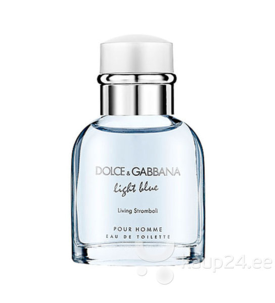 Tualettvesi Dolce & Gabbana Light Blue Living Stromboli EDT meestele 40 ml цена и информация | Meeste lõhnad | kaup24.ee