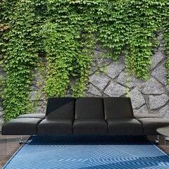 Фотообои - Зеленая стена цена и информация | Отделка стен | kaup24.ee