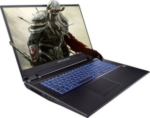 Dream Machines RT2060-17PL16 16 GB RAM/ 480 GB SSD/ Windows 10 Pro
