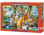 Pusle Puzzle Castorland Tigers by the Stream, 1000 osa hind ja info | Pusled | kaup24.ee